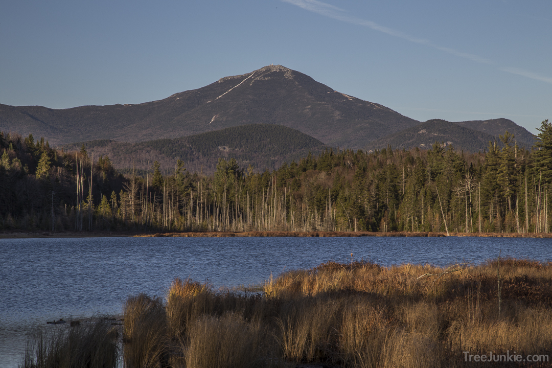 Whiteface from Big Cherrypatch Pond