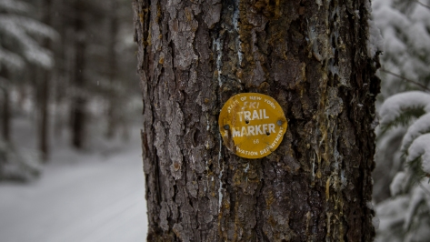 Yellow (Ski) Trail Marker