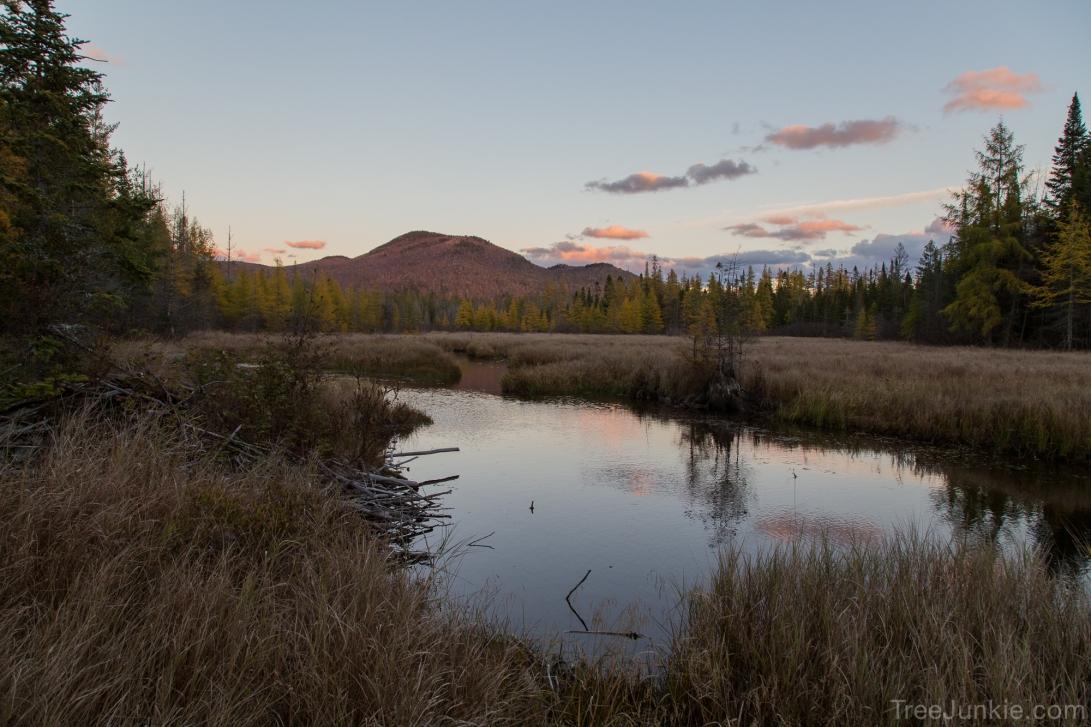 Abandoned Beaver Pond 2015-10-22