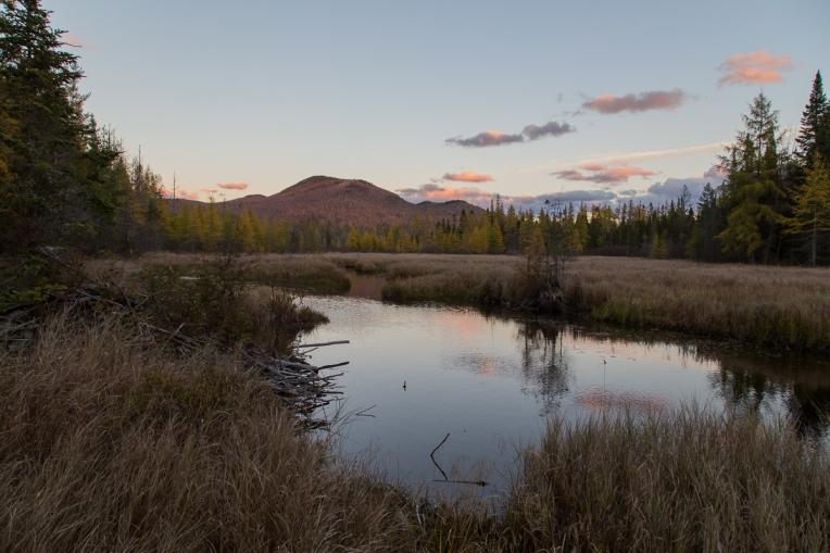 Abandoned Beaver Pond 2015-10-22 1200px