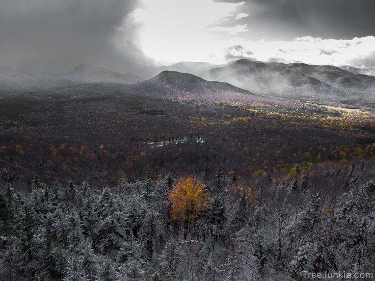When Winter Meets Autumn